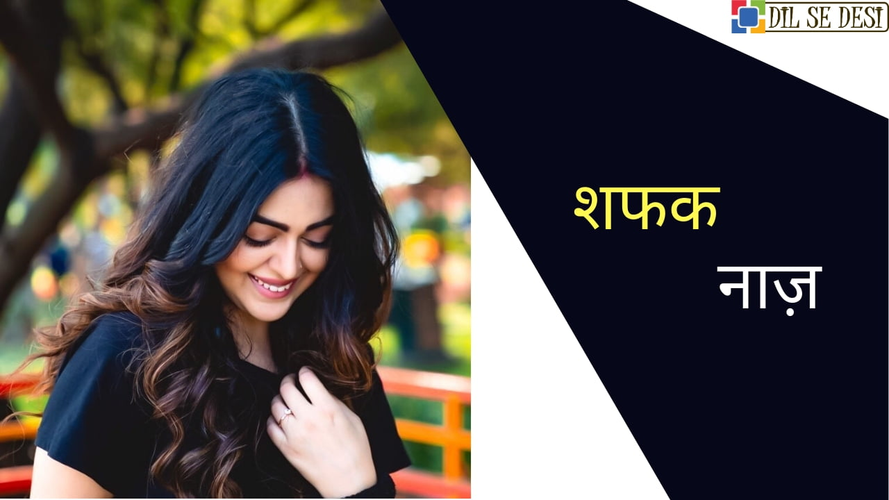Shafaq Naaz Biography in Hindi