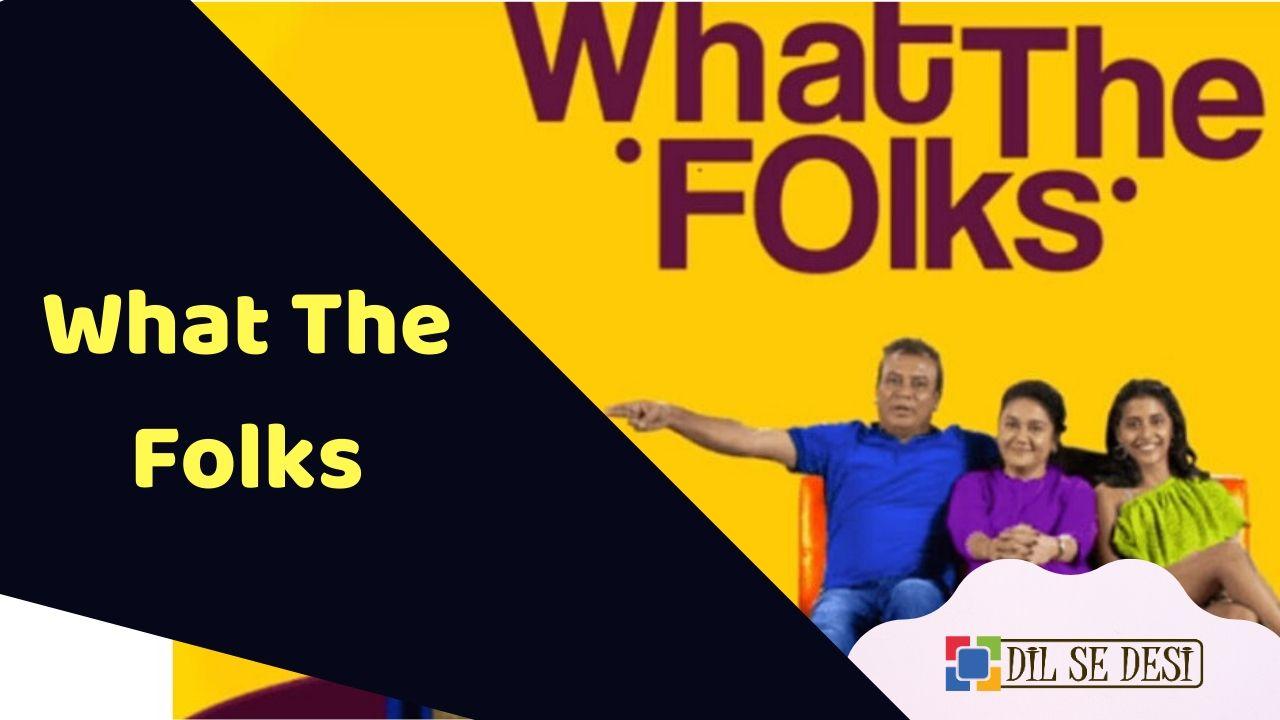 What The Folks (Season 3) Web Series Details in Hindi