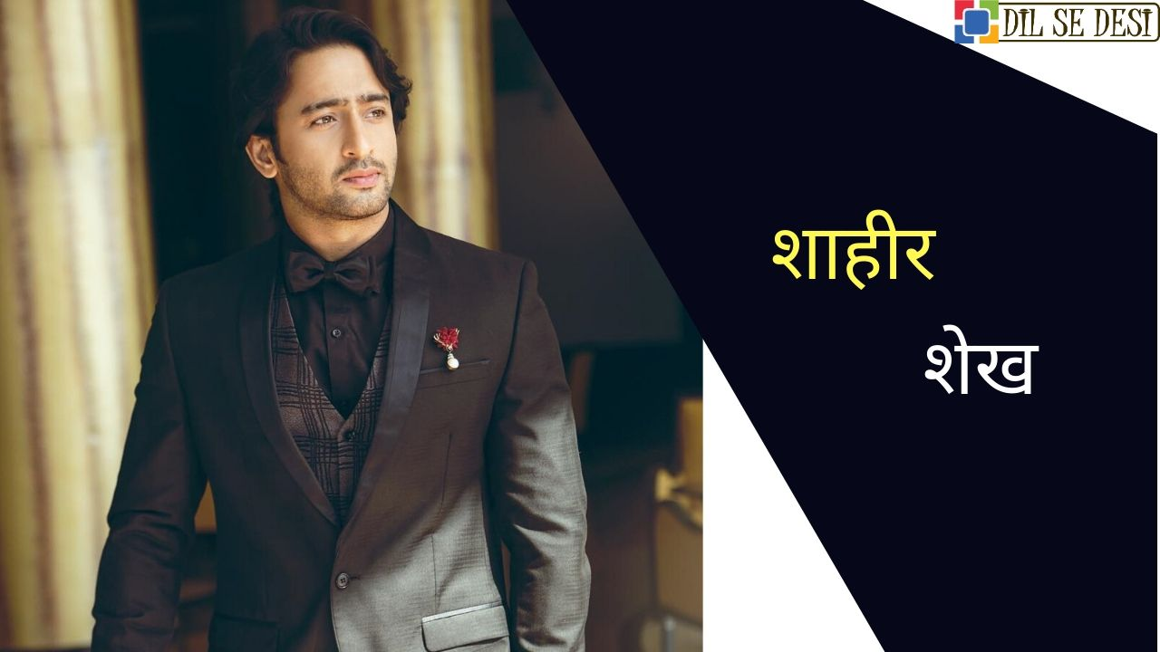 Shaheer Sheikh (Actor) Biography in Hindi