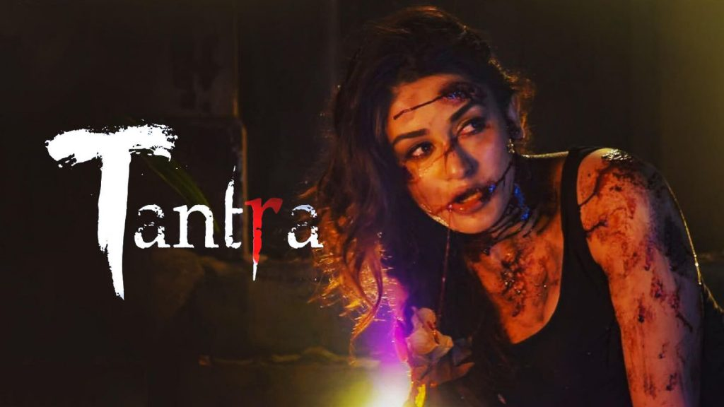 Top 10 Hindi Horror Web Series Indian 2020 You'd Love To Watch (10)
