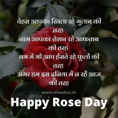 Best Rose Day Shayari For Husband, Wife, Boyfriend, Girlfriend In Hindi